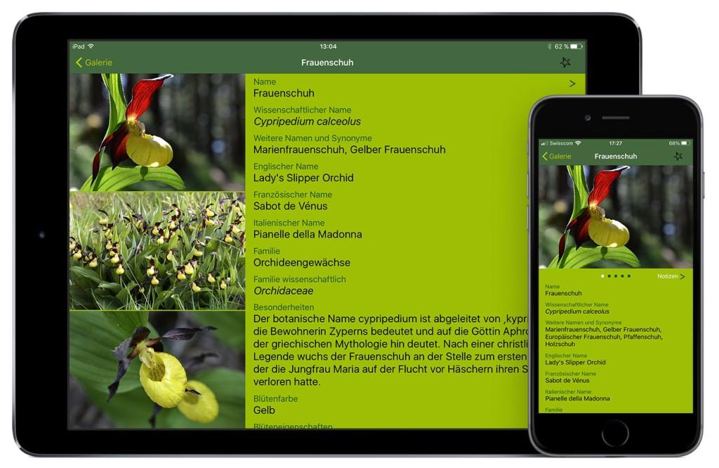 Alpenblumen Finder app